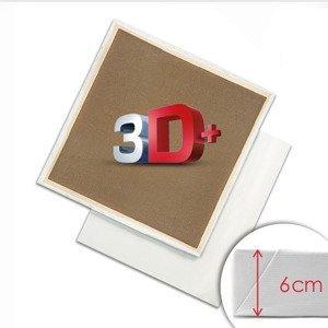 3D + Malířské plátno na rámu PROFI / Různé rozměry