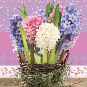 Ubrousky na dekupáž Hyacinths in a Basket - 1 ks (ubrousky na dekupáž)