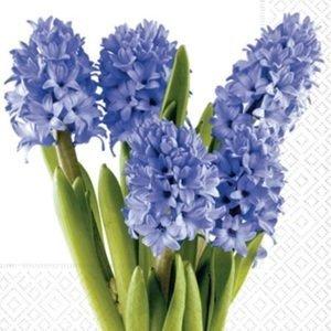 Ubrousky na dekupáž Hyacinths - 1 ks (ubrousky na dekupáž)
