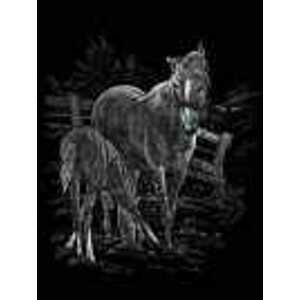 Kreativní set na engraving (rytí) - Koně