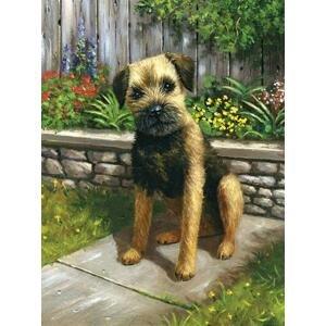 Kreativní set na malování - Pes v zahradě