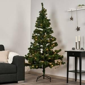 STAR TRADING LED vánoční stromek 180 cm, 180 LED