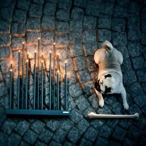By Rydéns By Rydéns Elfugan svíčkový lustr, černá