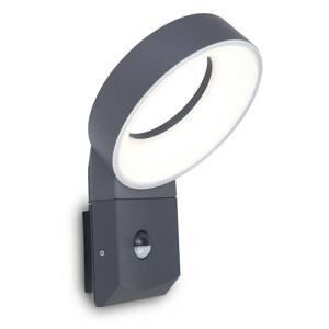 Eco-Light LED venkovní světlo Meridian s detektorem pohybu