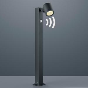 Helestra LED osvětlení cesty Part s hlásičem pohybu, grafit