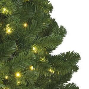Kaemingk LED strom Imperial vnitřní použití, zelená, 210 cm