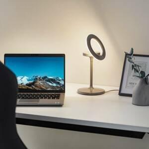 LTS LED stolní lampa Filigree, otočná/naklápěcí šedá