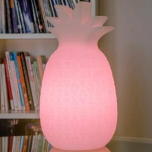 NEWGARDEN Newgarden Samba LED stolní lampa s baterií