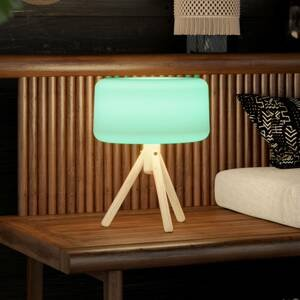 NEWGARDEN Newgarden Chloe LED solární stolní lampa s baterií