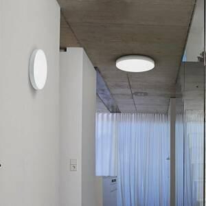 LEDVANCE Ledvance Planon Frameless Round LED panel Ø 45cm
