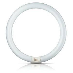 Philips G10q 32W 840 světelný kruh Master Circular TL-E