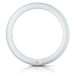 Philips G10q 32W 865 světelný kruh Master Circular TL-E