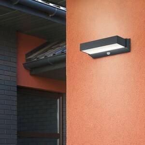 Trio Lighting LED venkovní světlo Cuando s detektorem pohybu