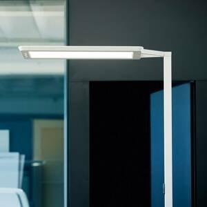 WALDMANN Stojací lampa LED Yara.single 4 000K, LTX stříbro