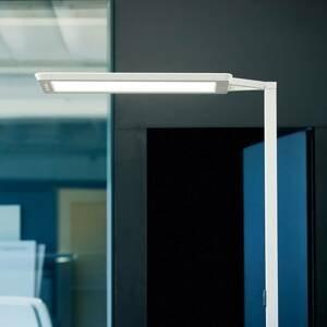 WALDMANN Stojací lampa LED Yara.single VTL, PIR, stříbrná