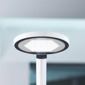 WALDMANN LED stolní lampa PARA.MI FTL 102 R bílá 940