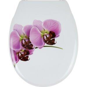 Sadena WC SEDÁTKO - růžová, bílá