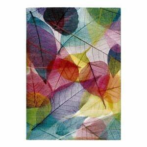 Koberec Universal Colors Multi, 120x170cm