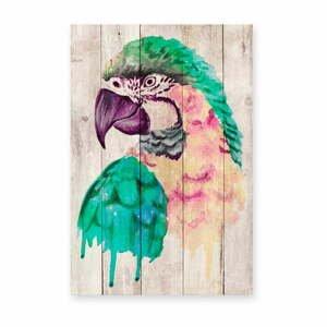 Nástěnná dekorace z borovicového dřeva Madre Selva Watercolor Parrot, 60 x 40 cm