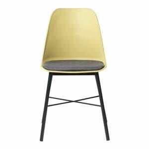 Žlutá jídelní židle Unique Furniture Whistler