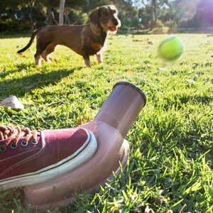 Vrhač míčků pro psy InnovaGoods Playdog