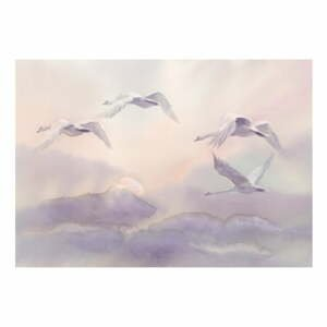 Velkoformátová tapeta Bimago Flying Swans, 400x280cm