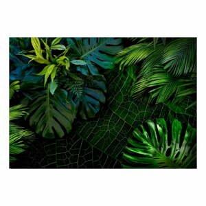 Velkoformátová tapeta Bimago Dark Jungle, 400x280cm