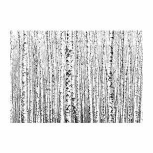 Velkoformátová tapeta Artgeist Birch Forest,200x140cm
