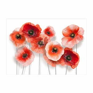Velkoformátová tapeta Artgeist Nine Poppies,200x140cm