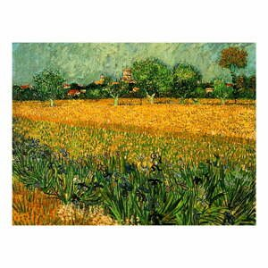 Reprodukce obrazu Vincenta van Gogha - View of arles with irises in the foreground, 40 x 30 cm