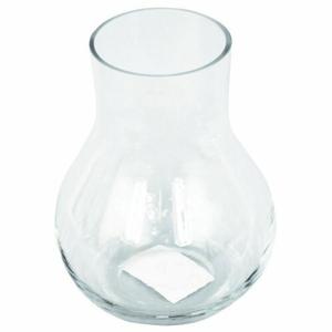 Skleněná váza Ricey čirá, 15 cm