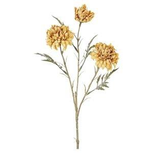Dekorační Rostlina Aksamitník, 40cm